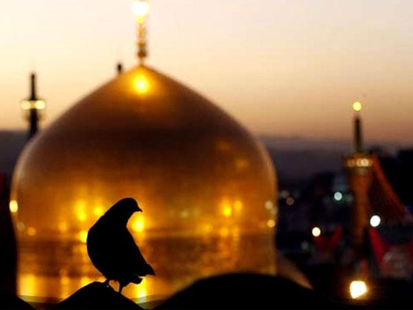 تور مشهد | مشهد هوایی